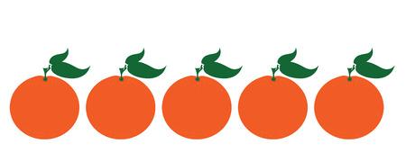 Painted vector illustration of oranges on white background. Symbol of fruit, food,vegetarian,vegan.