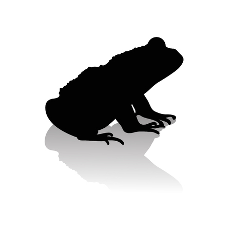 Vector silhouette of frog on white background.Symbol of animal and nature.