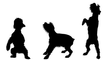 Vector silhoutte of set dogs on white background. Symbol of animal and veterinary.