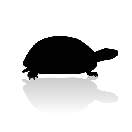Vector silhouette of turtle on white background.Symbol of animal and nature.