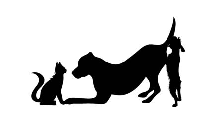 Vector silhouette of group of dogs with cat. Symbol of animal friends on white background. Funny activities.