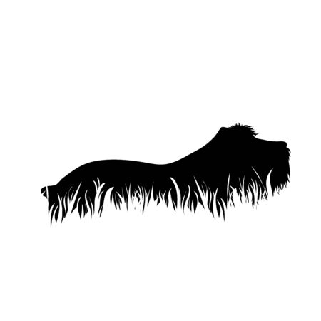Vector silhoutte of dog in the grass on white background. Symbol of animal, pet, park, nature.