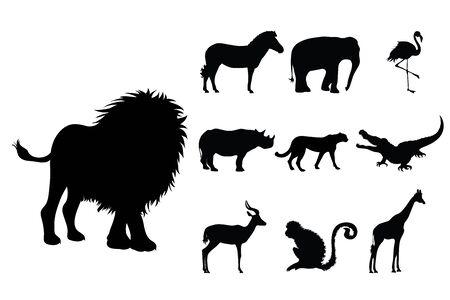 Collection vectors of wild animal on white background. Symbol of lion, elephant, rhinoceros, zoo, Africa, monkey, cheetah, logo, sign.