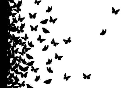 Vector silhouette of butterfly on white background. Symbol of animal, insect, fly, migratory.  イラスト・ベクター素材