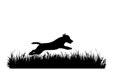 Vector silhouette of dog in the grass on white background. Symbol of animal, pet, run, nature, park, garden.