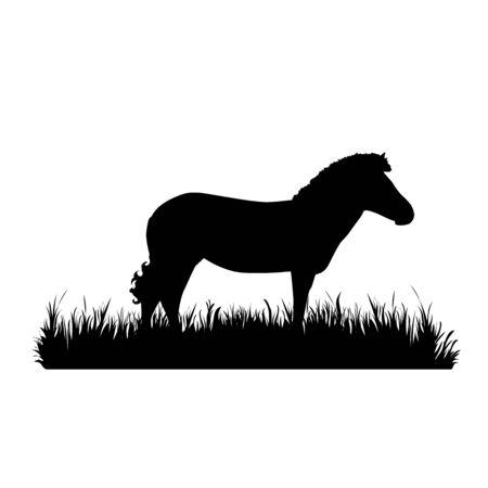 Vector silhouette of zebra in the grass on white background. Symbol of animal, zoo, Africa, safari, wild, nature, park, garden. 向量圖像