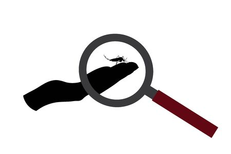 Vector silhouette of mosquito sitting in human palm under magnifying glass on white background. Symbol of insect who annoying people. Danger of malaria and dengue disease.