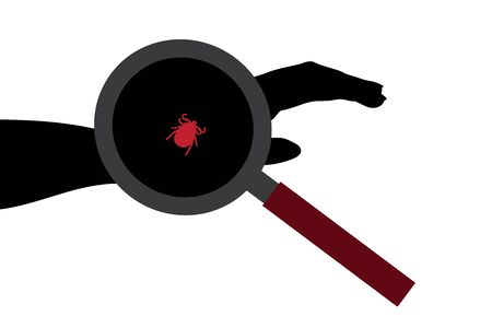 Vector silhouette of tick sitting on human hand under magnifying glass on white background. Symbol of insect who annoying people. Danger of Lyme disease and encephalitis.