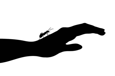 Vector silhouette of ant sitting on human hand on white background. Symbol of insect who annoying people. Ilustrace