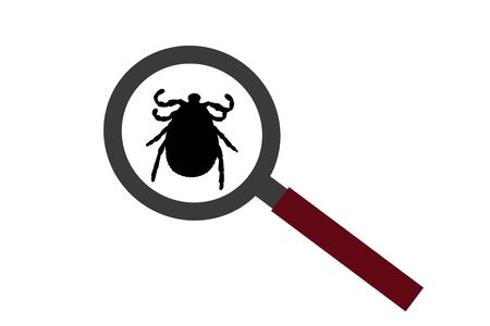 Vector silhouette of tick under magnifying glass on white background. Symbol of insect who annoying people. Danger of Lyme disease and encephalitis.