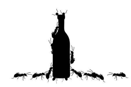 Vector silhouette of bottle with ants on white background. Symbol of insect eating food.
