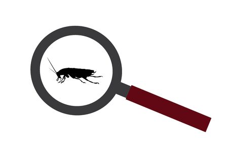 Vector silhouette of cockroach under magnifying glass on white background. Symbol of insect who annoying people.