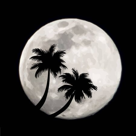 Vector illustration of palm tree on moon background. Symbol of night and universe.