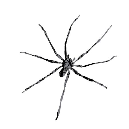 Vector silhouette of spider with trees on background. Symbol of insect.