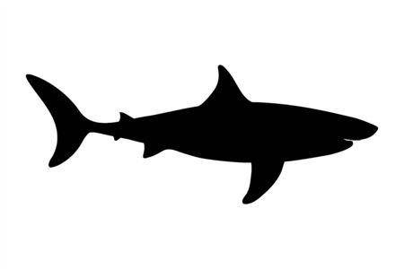 Vector silhouette of shark on white background. Symbol of ocean animal. 矢量图像