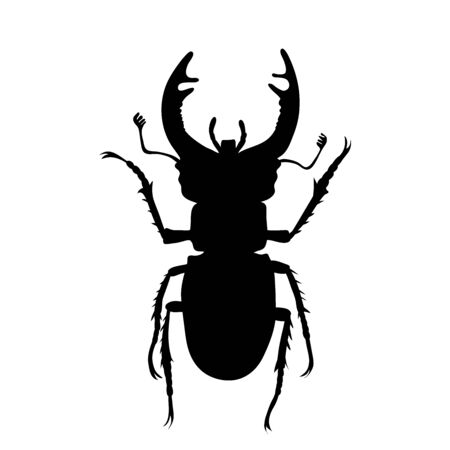 Vector silhouette of stag beetle on white background. Symbol of animal.