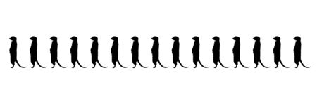 Vector silhouette of group of meercats on white background. Symbol of animals.
