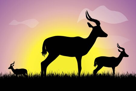 Vector silhouette of group of antelops in the grass at sunset. Symbol of nature.