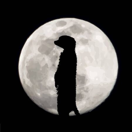 Vector silhouette of meercat on moon background. Symbol of night.