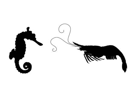 Vector silhouette of seahorse and shrimp on white background. Symbol of ocean animal.