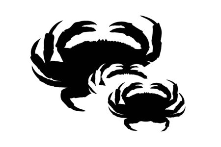 Vector silhouette of family of crabs on white background. Symbol of ocean animal.