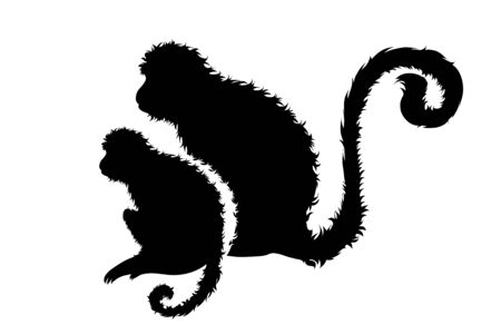 Vector silhouette of couple of monkeys. Symbol of wild animal.