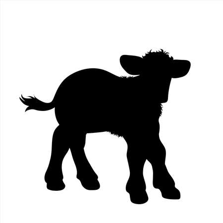 Vector silhouette of calf on white background. Symbol of farm animal.