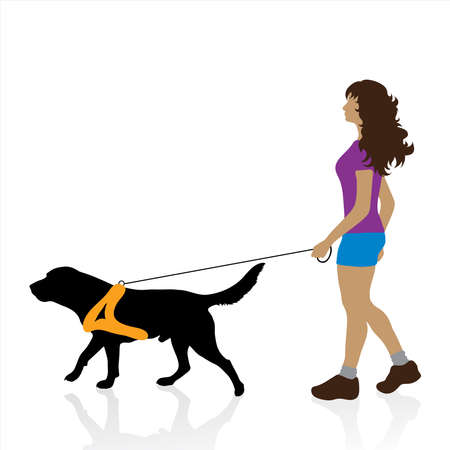 Vector illustration of woman who walk with dog. Symbol of pet and animal. 向量圖像
