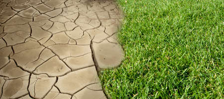 Environmental global warming concept, dry cracked ground and green grassy land. 版權商用圖片