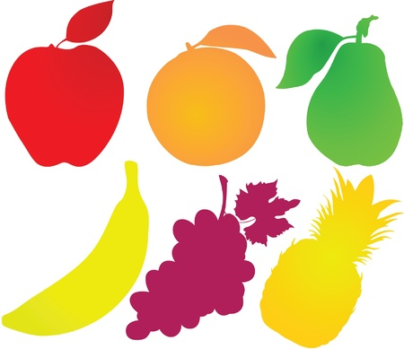 colorfull: colorfull fruits illustration
