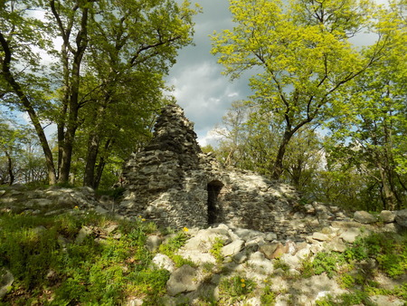nobleman: Castle ruins in forest Stock Photo