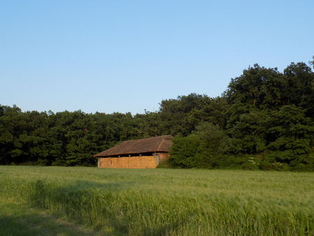 greenwood: Barn