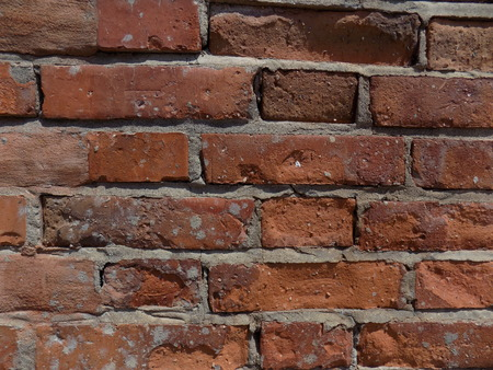 ordered: Bricks wall texture