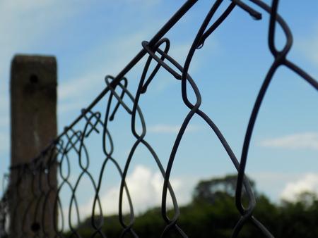 metallic: Metallic fence