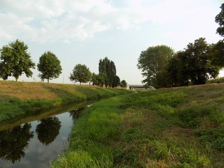Creek in nature 版權商用圖片