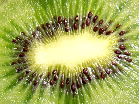 juicy: Juicy kiwi fruit detail