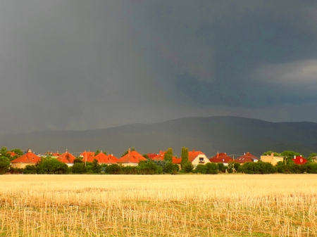 precipitaci�n: Precipitation Curtain during summer storm over hills near village
