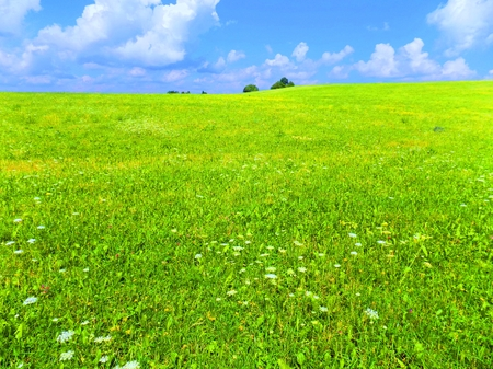 convection: Meadow and sky during sunny day