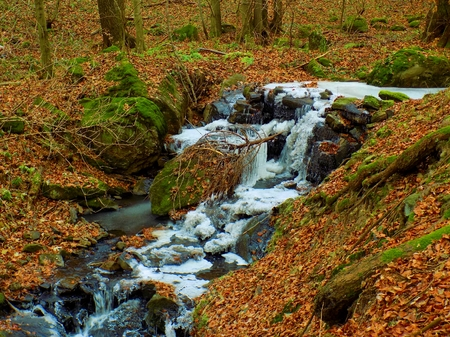 Frozen stream in deciduous forest during autumn and winter Stock Photo