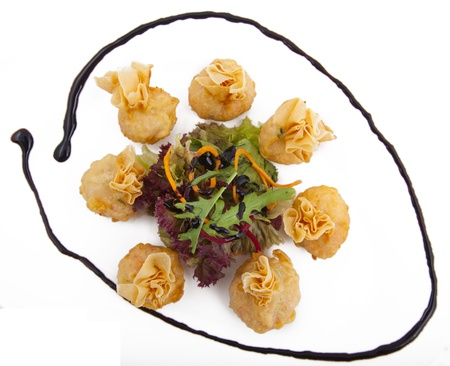 meat dumplings on a plate on white background Stock Photo - 22141539