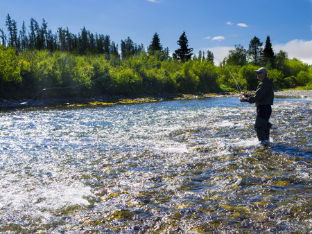 flyfishing: Photo fly-fishing on the river Stock Photo