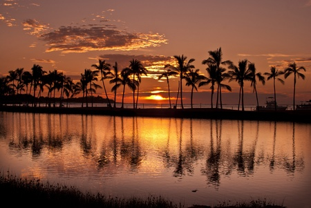 Waikoloa Sunset on the Island of Hawaii in front of ancient fish ponds and coconut tree covered beach.