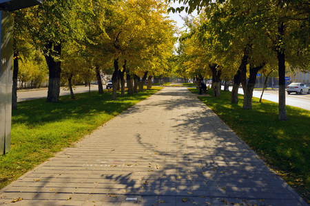 pedestrian walkway in the park on the street Profsoyuznaya, paving paving stone, Volgograd, October 2014