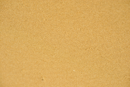 Sand Texture Background. Sand Texture.copy space and visible