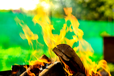 The concept of fire  flame tongue feeding on wooden logs on the background of the countryside plot of land. The concept of preventing fire and careless use of fire.