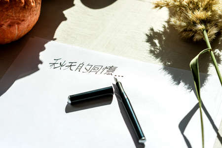 Chinese characters written with a fountain pen on paper under bright lighting.