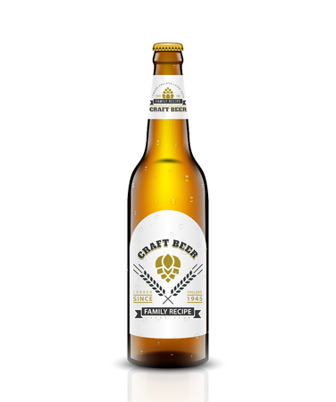 Beer bottle vector set. isolated on white background