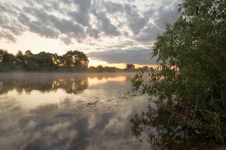 Summer. Early morning. Sunrise. Mirror surface of the pond with a haze of fog. Old willow tree on the shore. The rays of light breaking through tree branches and fog and illuminate the water surface. Stock Photo