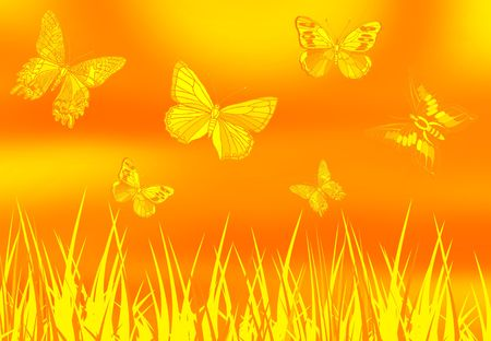 symetry: butterfly picture on golden color ground with grass Stock Photo