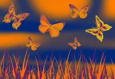 metamorphosis: butterfly picture on color full  orange ground with grass